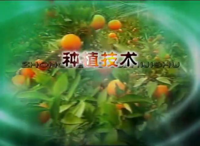 日光温室黄瓜番茄精量化施肥技术